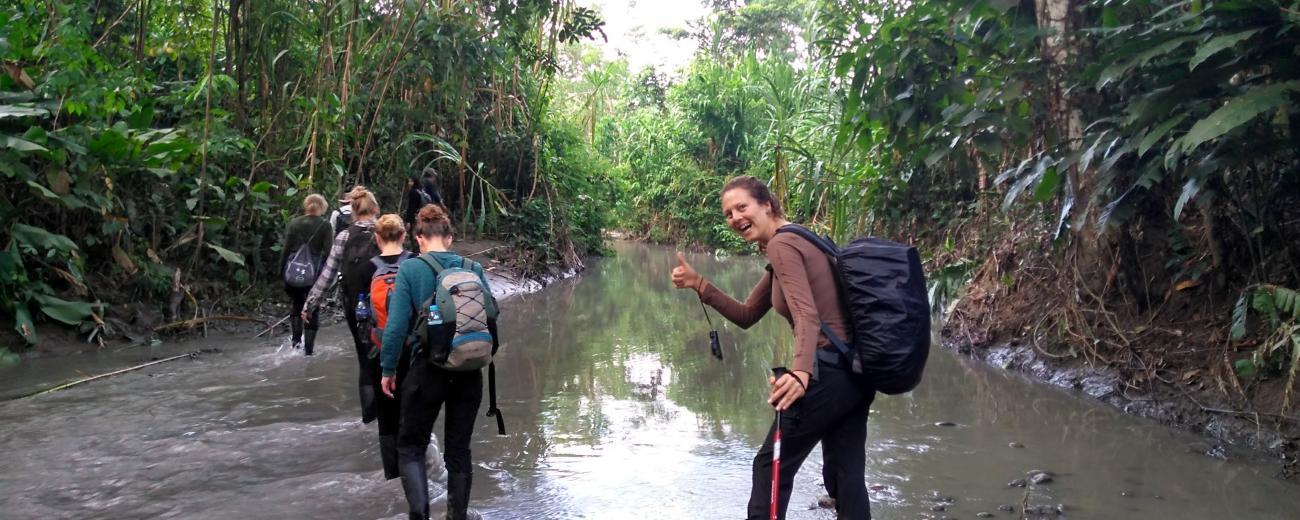 Exploring Rainforest.