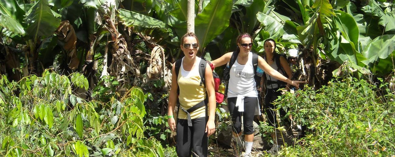 Trekking Throught Jungle